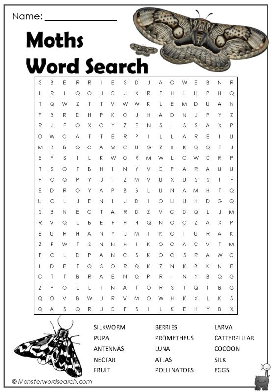 Moths Word Search