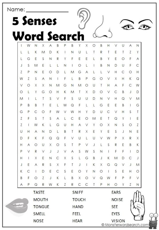 5 Senses Word Search